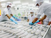 La décision du DOC sur le panga vietnamien transgresse la législation anti-dumping