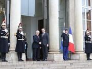 Vietnam-France : entretien entre Nguyen Phu Trong et Emmanuel Macron