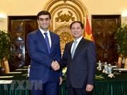 Vietnam-Turkménistan : consultation politique entre les ministères des Affaires étrangères