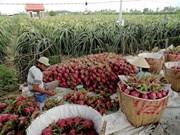 L'Australie aide le Vietnam dans le développement agricole