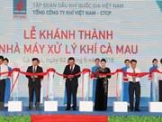 La présidente de l'AN inaugure l'usine de traitement de gaz de Cà Mau