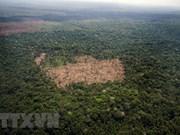 La Chine aide le Cambodge à protéger l'environnement