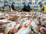Sept mois : le pays gagne 4,63 milliards de dollars des exportations des produits aquatiques