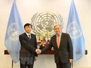 Le Vietnam contribue activement aux activités de l'ONU