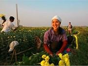Les femmes au travail: les couleurs de la vie en grand format