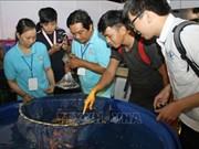 Festival des poissons d'aquarium de Ho Chi Minh-Ville