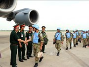 Le Vietnam œuvre pour des liens plus accrus et plus efficaces avec l'ONU