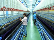 Ninh Binh : exportations de plus de 1,1 milliard de dollars des produits en neuf mois
