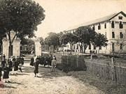 Le Lycée des Pamplemousses