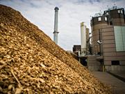 L'émergence du secteur de l'énergie biomasse au Vietnam