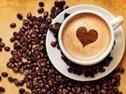 Le Vietnam devrait exporter 1,7 million de tonnes du café en 2018