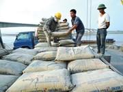 Hausse spectaculaire des exportations nationales de ciment et de clinker