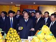 Hoa Binh signe des accords d'une valeur de plusieurs milliards de dollars