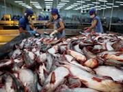 La Chine, un marché prometteur pour les poissons tra du Vietnam