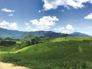 Quand développement rime avec environnement à Pù Luông