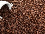 Les exportations nationales de café se portent bien en 11 mois