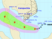 Le Vietnam se prépare à affronter le premier typhon de 2019
