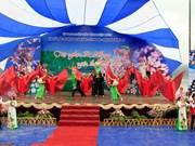 Dien Bien: deuxième festival des fleurs de cerisier à Pa Khoang