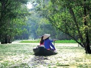 An Giang vise 9,2 millions de touristes en 2019
