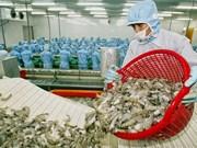 Les exportations nationales de crevettes visent 4 milliards de dollars en 2019