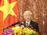 Vœux du Têt 2019 du secrétaire général et président Nguyên Phu Trong