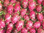 Les fruits vietnamiens de plus en plus populaires au Canada