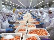 Le Vietnam, une nouvelle puissance agricole