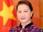 Renforcement de la coopération bilatérale Vietnam-Maroc