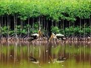 La gouvernance des aires protégées au menu d'un séminaire à Hanoi