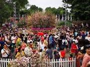 Sakura: Quand Hanoi se met à l'heure japonaise