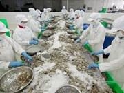 La décision préliminaire américaine bonne pour la crevette