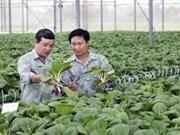 De grands groupes vietnamiens s'intéressent de près à l'agroalimentaire
