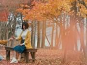 Film : « Promesse d'automne » au début de l'été