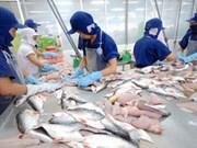 Croissance continue des exportations nationales de pangasius vers l'ASEAN