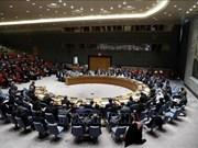 Le Vietnam continuera d'oeuvrer pour la paix et la sécurité du monde