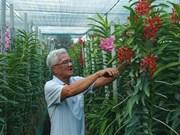 """Hô Chi Minh-Ville rehausse l'efficacité du programme d'édification """"La nouvelle ruralité"""""""