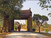 Tour et détour dans l'ancien village de Duong Lâm