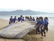 Le Vietnam s'engage à lutter contre les déchets marins
