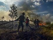 L'Indonésie peine toujours à maîtriser ses feux de forêt