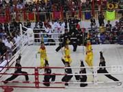 Le 2e Festival international des arts martiaux commence à Binh Dinh