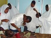 Le Vietnam pour l'aide internationale à la Somalie