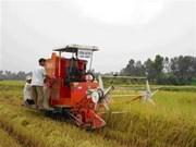 La FAO soutient le Vietnam dans le développement rural