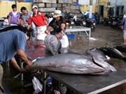 L'association du thon du Vietnam voit le jour