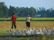 Le cinéma vietnamien présenté en Belgique