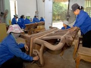 Des entreprises indiennes cherchent des partenaires vietnamiennes
