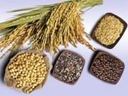 L'ASEAN élabore des normes pour les produits horticoles