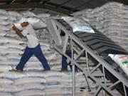 Plus de 1,3 mln de tonnes de sucre pour la récolte 2011-2012