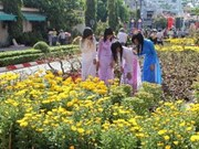 Les floralies, retour au printemps à Hô Chi Minh-Ville