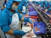 Les pangasius vietnamiens vendus sur 142 marchés