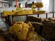 Le Vietnam connaît un excédent commercial avec la Malaisie